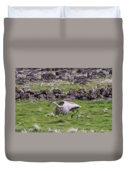 Duvet Cover featuring the photograph B27 by Joshua Able's Wildlife