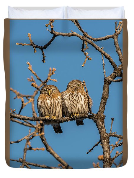 Duvet Cover featuring the photograph B36 by Joshua Able's Wildlife