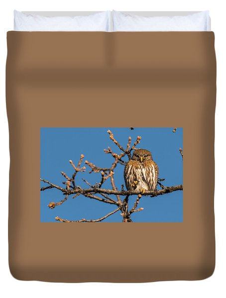 Duvet Cover featuring the photograph B37 by Joshua Able's Wildlife