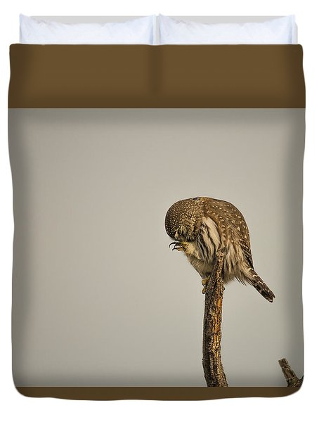 Duvet Cover featuring the photograph B41 by Joshua Able's Wildlife