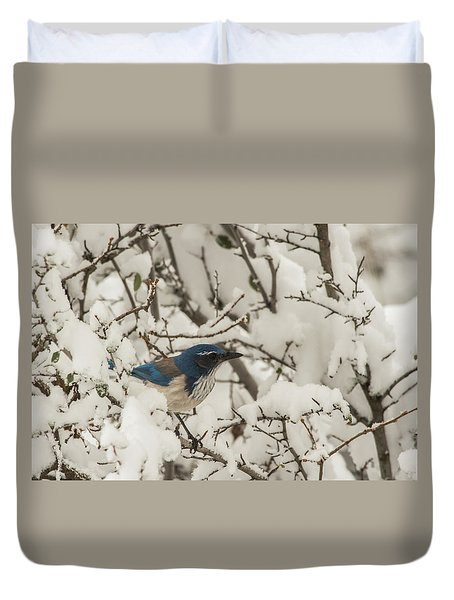 Duvet Cover featuring the photograph B44 by Joshua Able's Wildlife