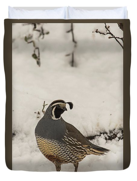 Duvet Cover featuring the photograph B45 by Joshua Able's Wildlife