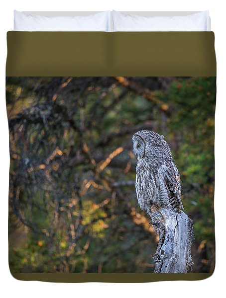 Duvet Cover featuring the photograph B46 by Joshua Able's Wildlife