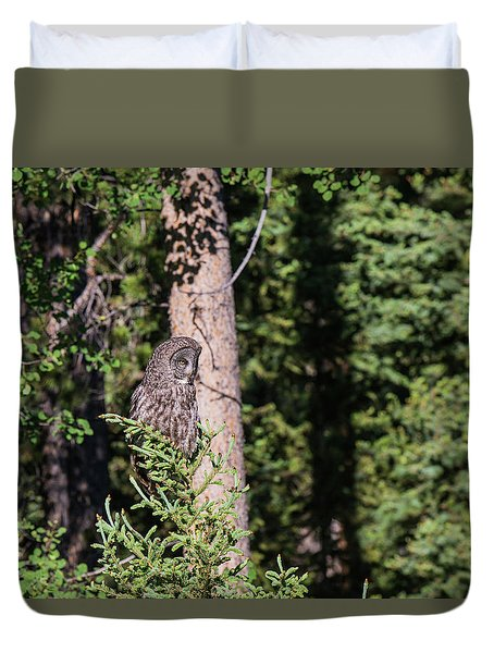 Duvet Cover featuring the photograph B50 by Joshua Able's Wildlife