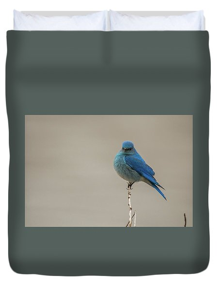 Duvet Cover featuring the photograph B52 by Joshua Able's Wildlife
