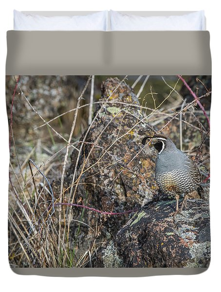 Duvet Cover featuring the photograph B53 by Joshua Able's Wildlife