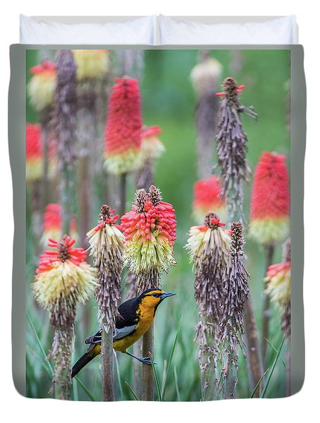 Duvet Cover featuring the photograph B58 by Joshua Able's Wildlife