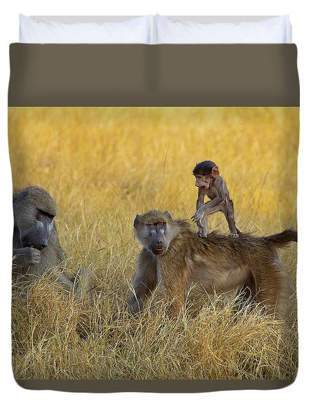 Baboons In Botswana Duvet Cover
