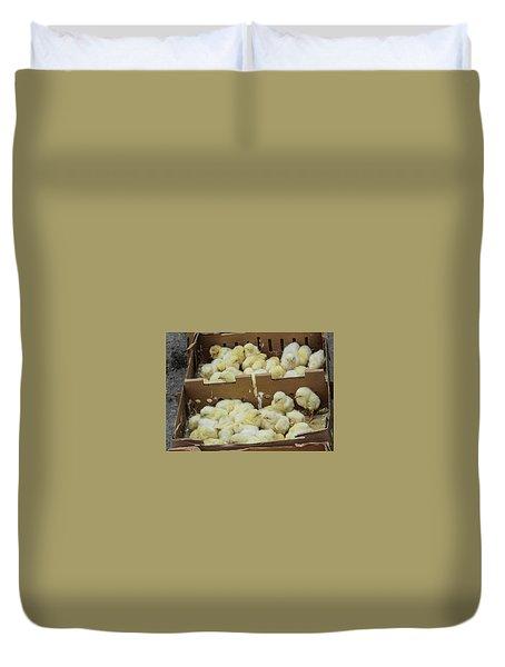 Baby Chicks  Duvet Cover