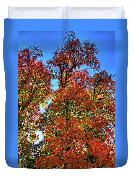 Duvet Cover featuring the photograph Backlit Autumn by David Patterson