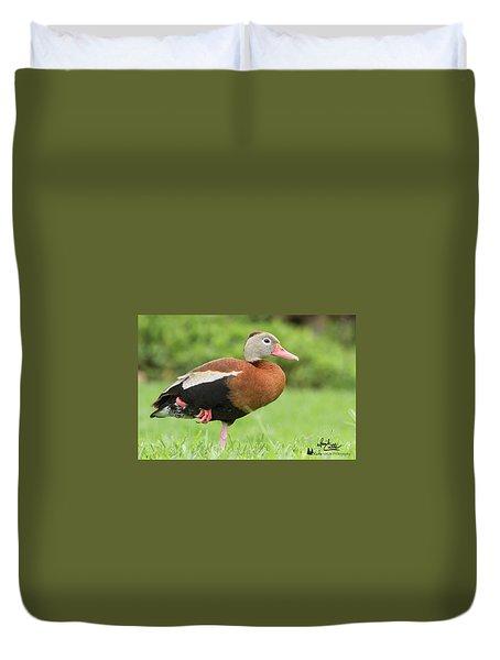 Balancing Black Bellied Whistling Duck Duvet Cover