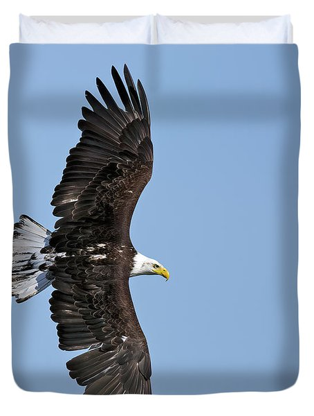 Bald Eagle In Turn Duvet Cover