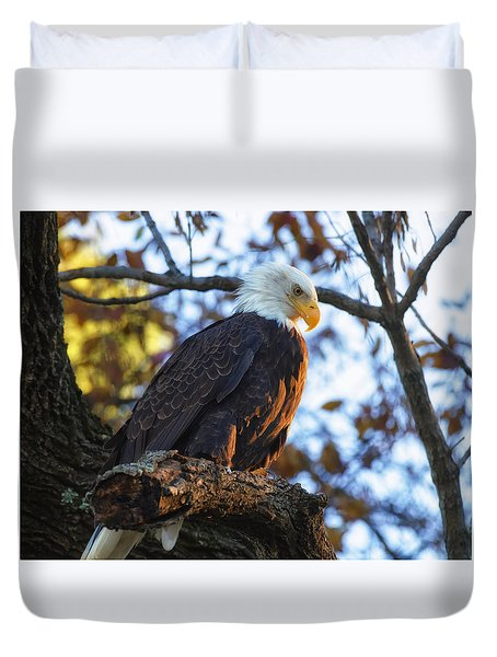 Duvet Cover featuring the photograph Bandit by Lori Coleman