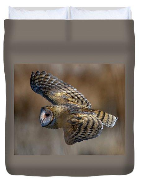 Barn Owl In Flight Duvet Cover