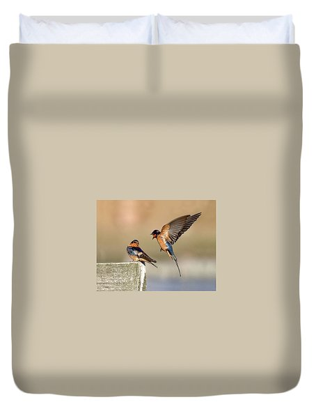 Barn Swallow Conversation Duvet Cover