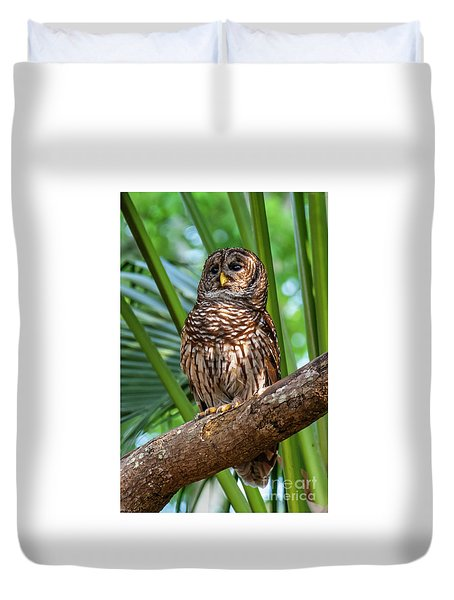 Barred Owl On Perch Duvet Cover
