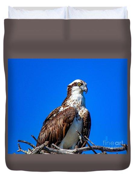 Beautiful Osprey Duvet Cover