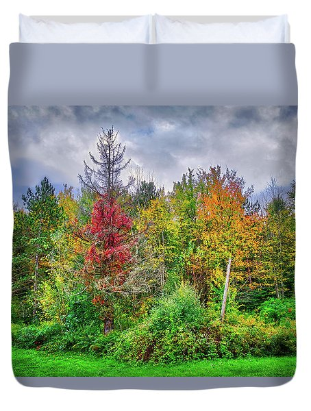 Duvet Cover featuring the photograph Beauty In The Fall Forest by Lynn Bauer