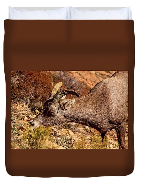 Duvet Cover featuring the photograph Big Horn Sheep 2, Zion by Dawn Richards