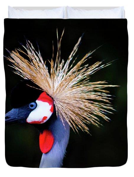 Birds 123 Duvet Cover
