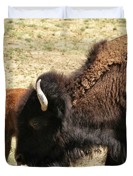 Bison In North Dakota Duvet Cover