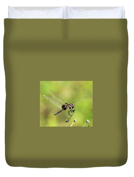 Black Saddlebags Dragonfly Duvet Cover