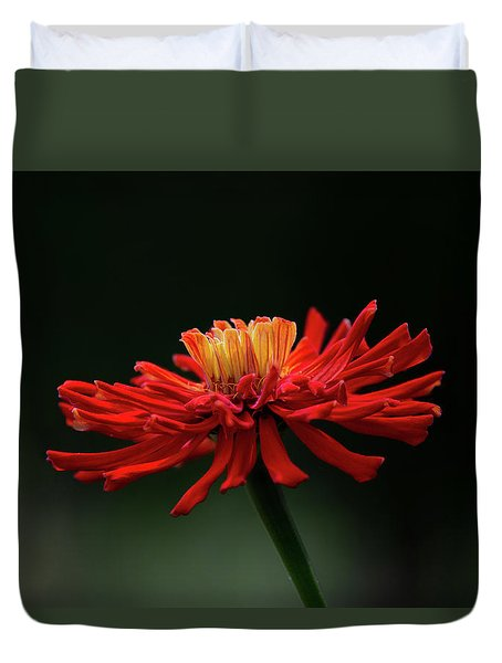 Duvet Cover featuring the photograph Blazing Red by Dale Kincaid