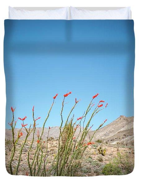 Blooming Ocotillo Duvet Cover