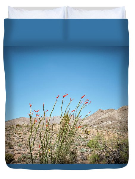 Blooming Ocotillo Duvet Cover