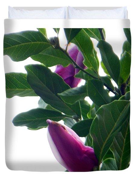 Blossoming Magnolias Duvet Cover