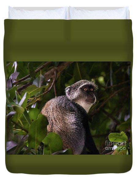 Blue Monkey, Zanzibar Duvet Cover