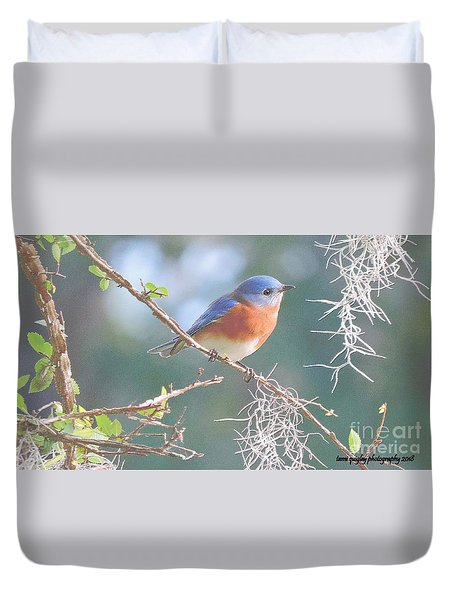 Bluebird In Dixie  Duvet Cover