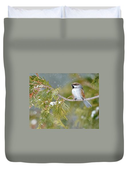 Boreal Chickadee In Winter Duvet Cover