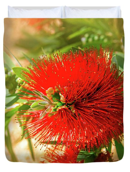 Bottlebrush Bloom Duvet Cover
