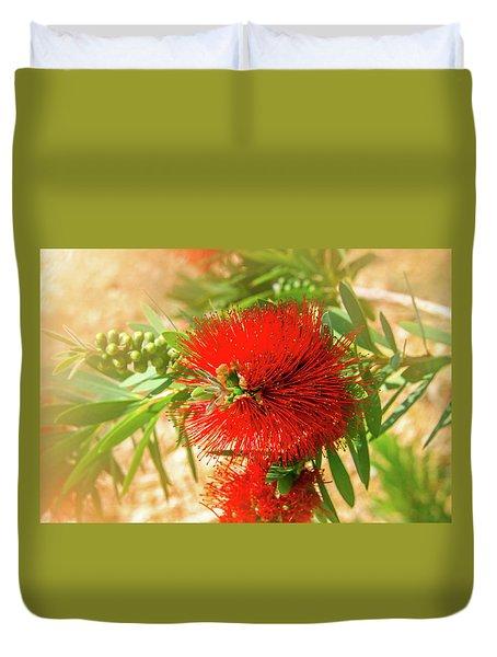 Bottlebrush Bloom Duvet Cover