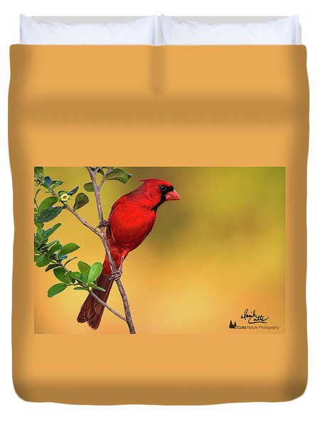 Bright Red Cardinal Duvet Cover