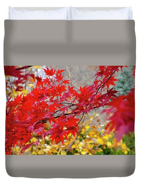 Brilliant Fall Color Duvet Cover