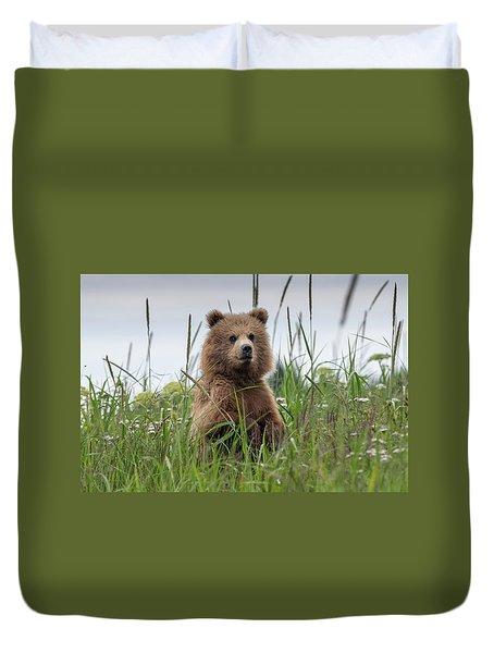 Brown Bear Cub In A Meadow Duvet Cover
