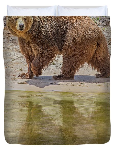Brown Bear Reflection Duvet Cover