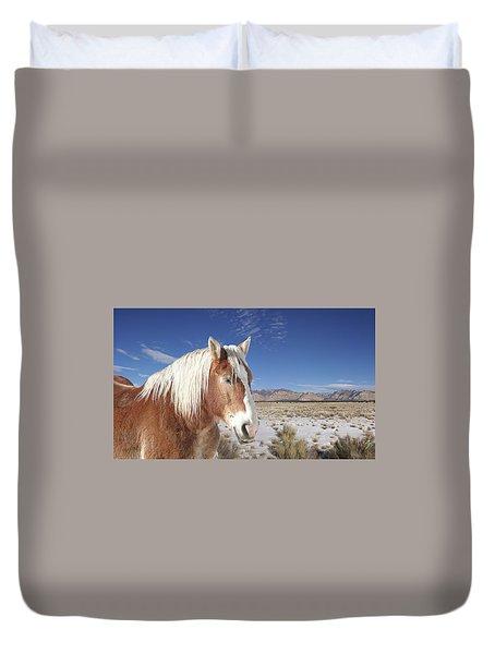 Brown Horse  Duvet Cover