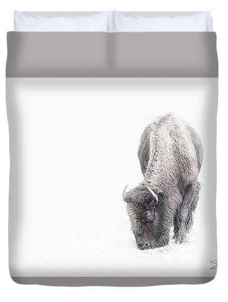 Buffalo In White Duvet Cover