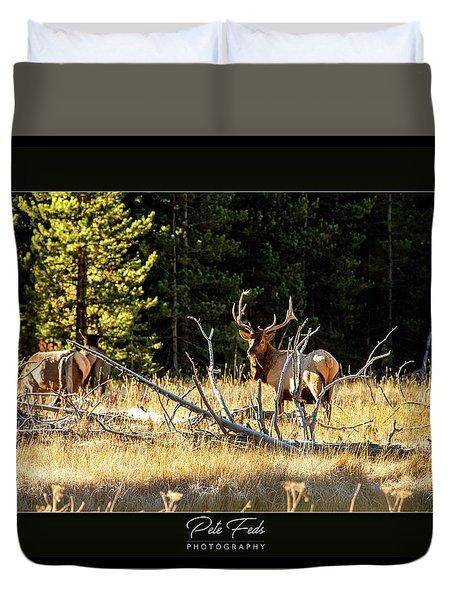 Bull Elk Duvet Cover