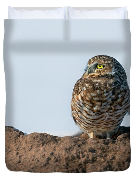 Burrowing Owl After The Snow Duvet Cover