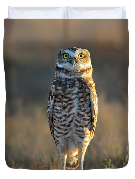 Burrowing Owl At Attention  Duvet Cover