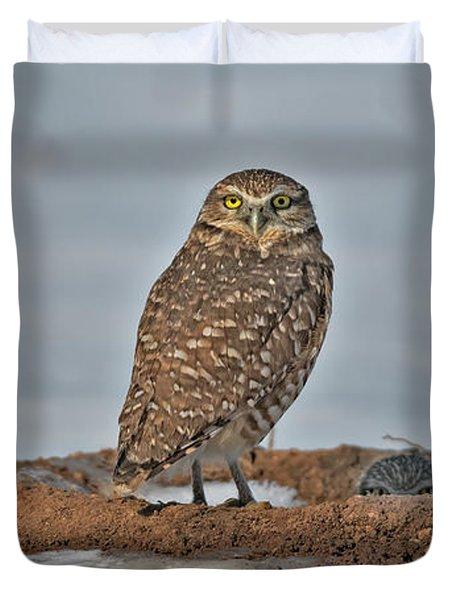 Burrowing Owl In Snow Duvet Cover
