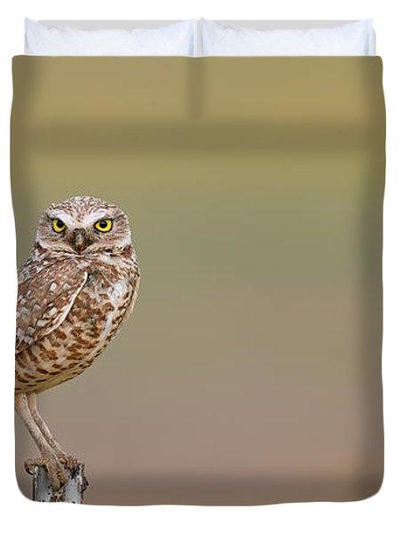 Burrowing Owl Sitting On Post  Duvet Cover