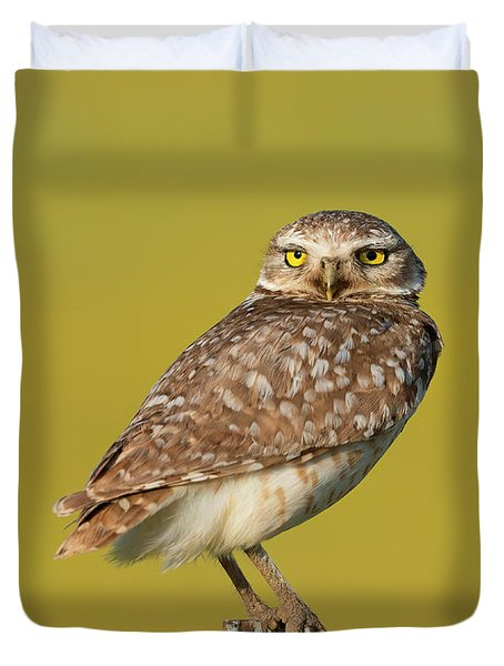 Burrowing Owl Watching From A Post  Duvet Cover
