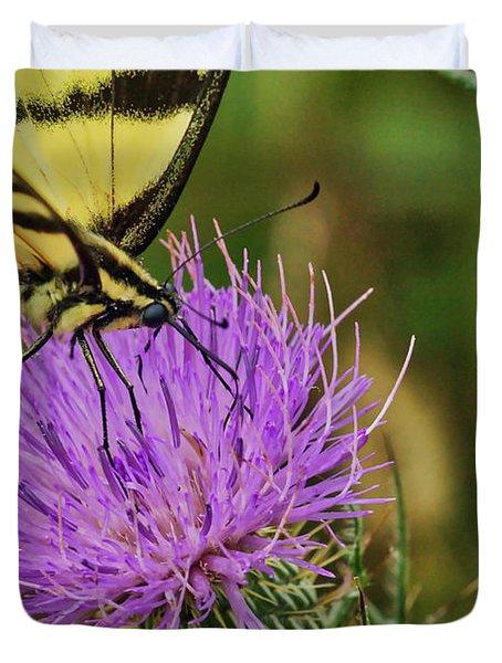 Butterfly On Bull Thistle Duvet Cover