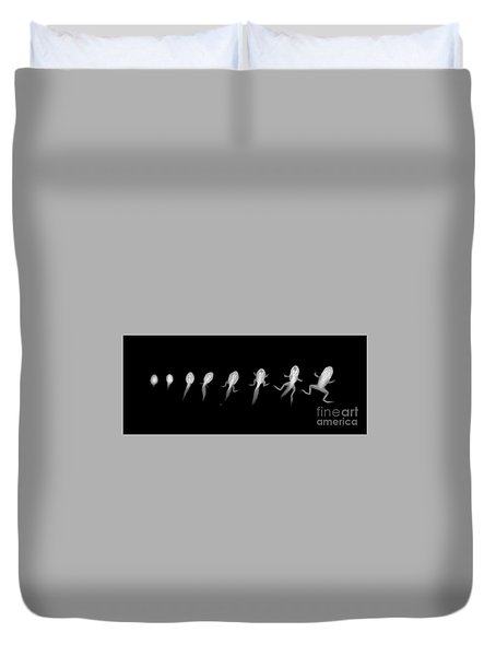 C037/4695 Duvet Cover