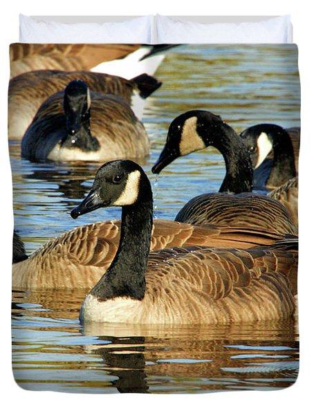 Canada Geese Duvet Cover